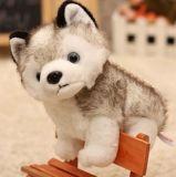Giocattolo di menzogne dell'animale farcito della peluche del cane del husky