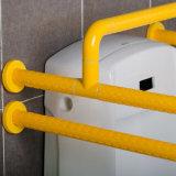Della fabbrica barre fissate al muro della maniglia dell'orinale della stanza da bagno direttamente per gli anziani