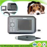 Guter Preis-Handveterinärultraschall-Maschine für Hundekatze Bovini Schaf-Schwangerschaft-Hersteller - Fanny