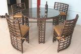Tabella Furniture-119 esterno del rattan di svago