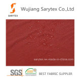 Paládio Wr/C6 de Velour70%Poly 30%Nylon 30n/Tx30n/T 272X183 73gr/Sm 139cm para a tela ao ar livre