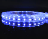 5050 tira do diodo emissor de luz da cor 60LED/M de SMD RGB com controlador