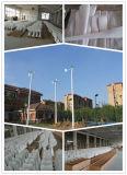 S tapent à 100W 12V le petit moulin à vent de décoration de jardin (YC-100S)