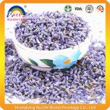 Het op smaak gebrachte Aftreksel van de Lavendel
