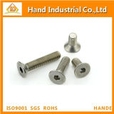 Tornillo principal de Csk del socket Hex del acero inoxidable M12 DIN7991