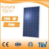 Comitato solare policristallino 250W di prezzi di fabbrica con le celle solari del mondo