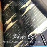 Impression d'écran en pile solaire de silicium