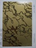 Linha de 304 espelhos que grava a chapa de aço inoxidável da cor dos produtos de aço