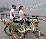 250With350With500W電気配達自転車または配達Bike/E貨物バイクか多目的電気自転車または貨物Pedelecまたは貨物自転車または急使のバイクかコーヒーバイク、En15194