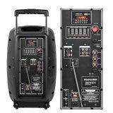 Altoparlante della batteria ricaricabile di Feiyang Temeisheng 15inch con 7.5A la batteria al piombo Bluetooth F23
