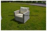 Nuova mobilia del giardino del rattan & dell'alluminio del PE di disegno, sofà esterno del rattan della mobilia di svago (TG-8002)