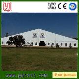 50m sehr großes transparentes freies Dach-Oberseite-Zelt für Ereignis-Partei
