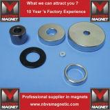 De Magneet van de Ring van het neodymium voor Kosmetische Gevallen in Veelpolige Magnetisering