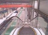 Эскалатор себестоимоста поручня дома покупкы Autostart Vvvf крытый напольный