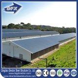 Disegno prefabbricato della Camera dell'azienda avicola della struttura d'acciaio del fabbricato agricolo del pollo