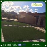 منظر طبيعيّ مع عشب اصطناعيّة مرح جافّ