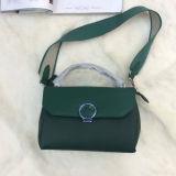 De Schouder van het Ontwerp van de manier doet Echt Leer in zakken Dame Handbag Emg4951