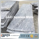 Azulejo de suelo de piedra natural del granito/azulejo de suelo de madera de la mirada