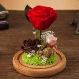 휴일 훈장 발렌타인 데이 생일 선물을%s Handmade 100% 자연적인 실제적인 꽃