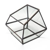 Cheap Price Geometric Glass Terrarium for Flower
