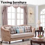 旧式なファブリックソファー居間のためのアメリカの古典的なソファ及びアーム椅子