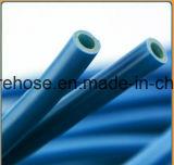 Boyau de jardin extensible de double de latex de produits de source de qualité tissu de faisceau, platine, 25-Feet