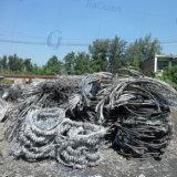Desecho del cobre del precio de fábrica/cobre el 99% del desecho del alambre de cobre/de la baya del molino