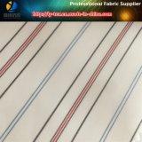 Rote Zeile Hülsen-Futter in Polyester-Garn-gefärbtem Gewebe für Kleid (S71.74)