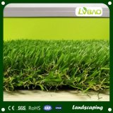 عشب اصطناعيّة لأنّ منظر طبيعيّ