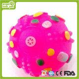 Hundespielzeug-buntes Nahrung- für Haustierekugel-Haustier-Spielzeug
