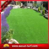عشب اصطناعيّة, حديقة عشب, مرج, يرتّب مرج