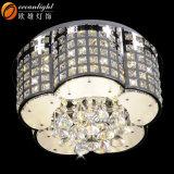 수정같은 천장 램프 호텔 /Home Om55103를 위한 장식적인 꽃 모양 천장 램프