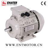 Motor elétrico energy-saving da indução IE2