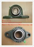 クロム鋼の挿入ベアリング(UCHA)
