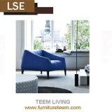 Conveninet und sauberer beweglicher moderner Wohnzimmer-Sofa-Entwurf