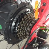 Anerkannter fetter Gummireifen-Strand-elektrisches Fahrrad 500W der Mann-En15194