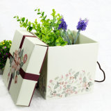 Коробка ящика картона конструкции способа высокого качества дешевая для оптовой продажи