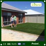 Het professionele Synthetische Gras die van de Tuin Kunstmatig Gras modelleren