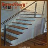 304# 316# Leuningen van het Roestvrij staal van de Balustrade van het Traliewerk van de Pijp SUS de Elegante voor Balkon (sj-H1735)