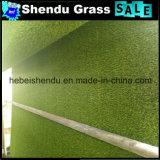 PE材料25mmのエクスポートのための人工的な草のカーペット