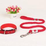 Trela do cão do abastecimento em produtos do animal de estimação (L006)