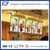 Panneau d'affichage à LED De restaurant de menu de qualité