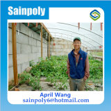 野菜のための熱い販売の太陽温室