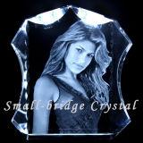 Álbum de foto cristalino del amante (ND1010)