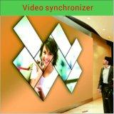 Vídeo dinámico del procesador video/del sincronizador video