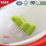 Netter Nagel-Reinigungs-Pinsel von China