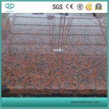 De in het groot Rode Plakken van het Graniet Slabs/G562/Polished voor Countertop/Bevloering/Tafelbladen/Vaas