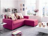 Purpurrotes Gewebe-Sofa-Bett für Haus-Gebrauch (SB006)