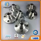 Forgiatura flangia di saldatura del collo in acciaio inox F304 tubo flangia (KT0372)