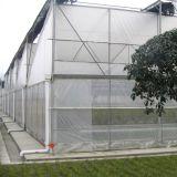 Самомоднейшее земледелие парник листа PC с окном крыши для Sawtooth